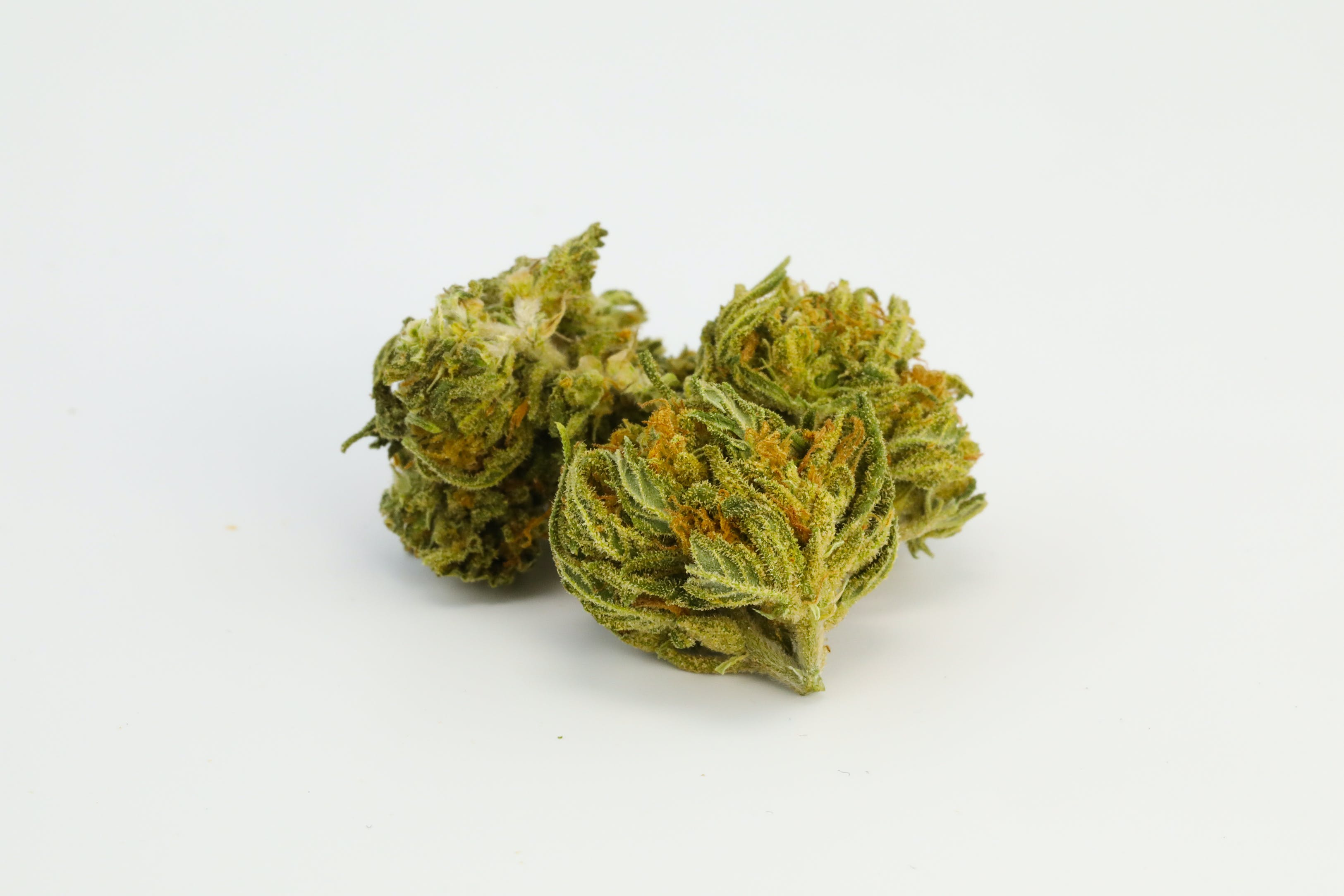 Shipwreck Weed; Shipwreck Cannabis Strain; Shipwreck Sativa Marijuana Strain