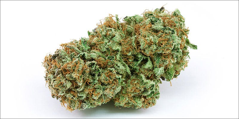 1 strain of day harlequin nug Cannabis Infused Roasted Red Potatoes Will Rock Your Dinner Table