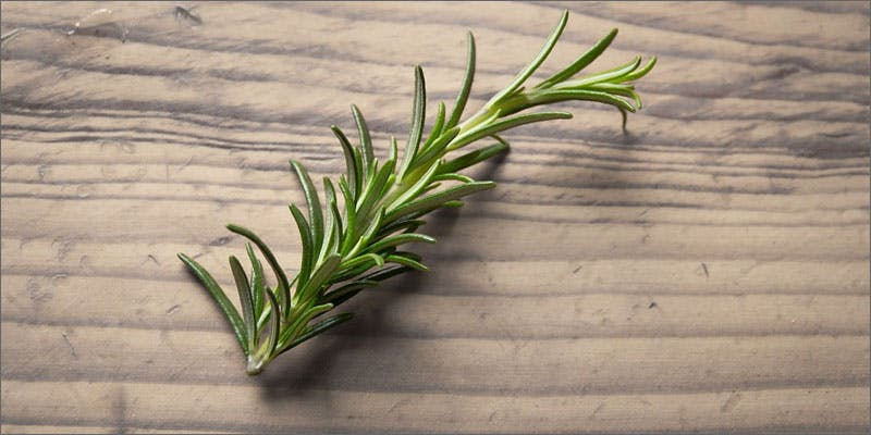 3 medicinal herbs with cannabis rosemary Christina Bellman: Levo Is The Next Evolution In Home Infusion
