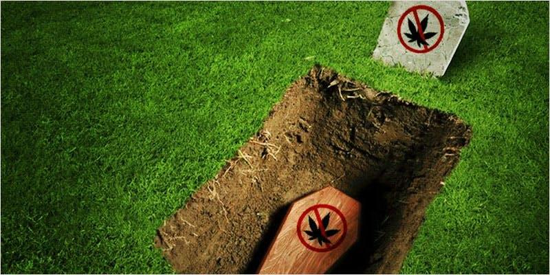 Horrifying Marijuana Laws