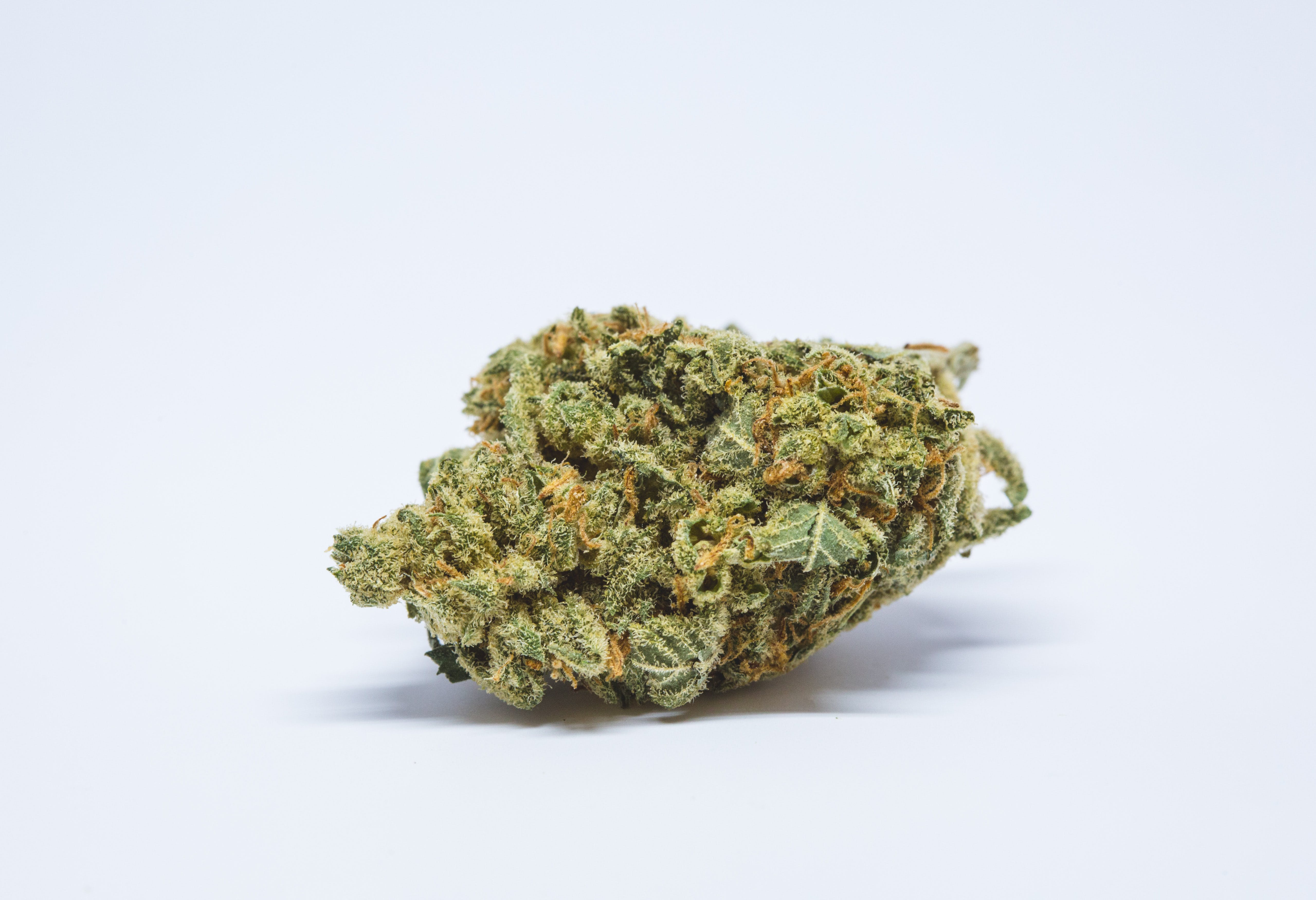 Mr. Nice Weed; Mr. Nice Cannabis Strain; Mr. Nice Hybrid Marijuana Strain