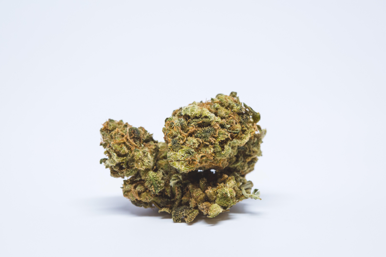 Tangie Weed; Tangie Cannabis Strain; Tangie Sativa Marijuana Strain