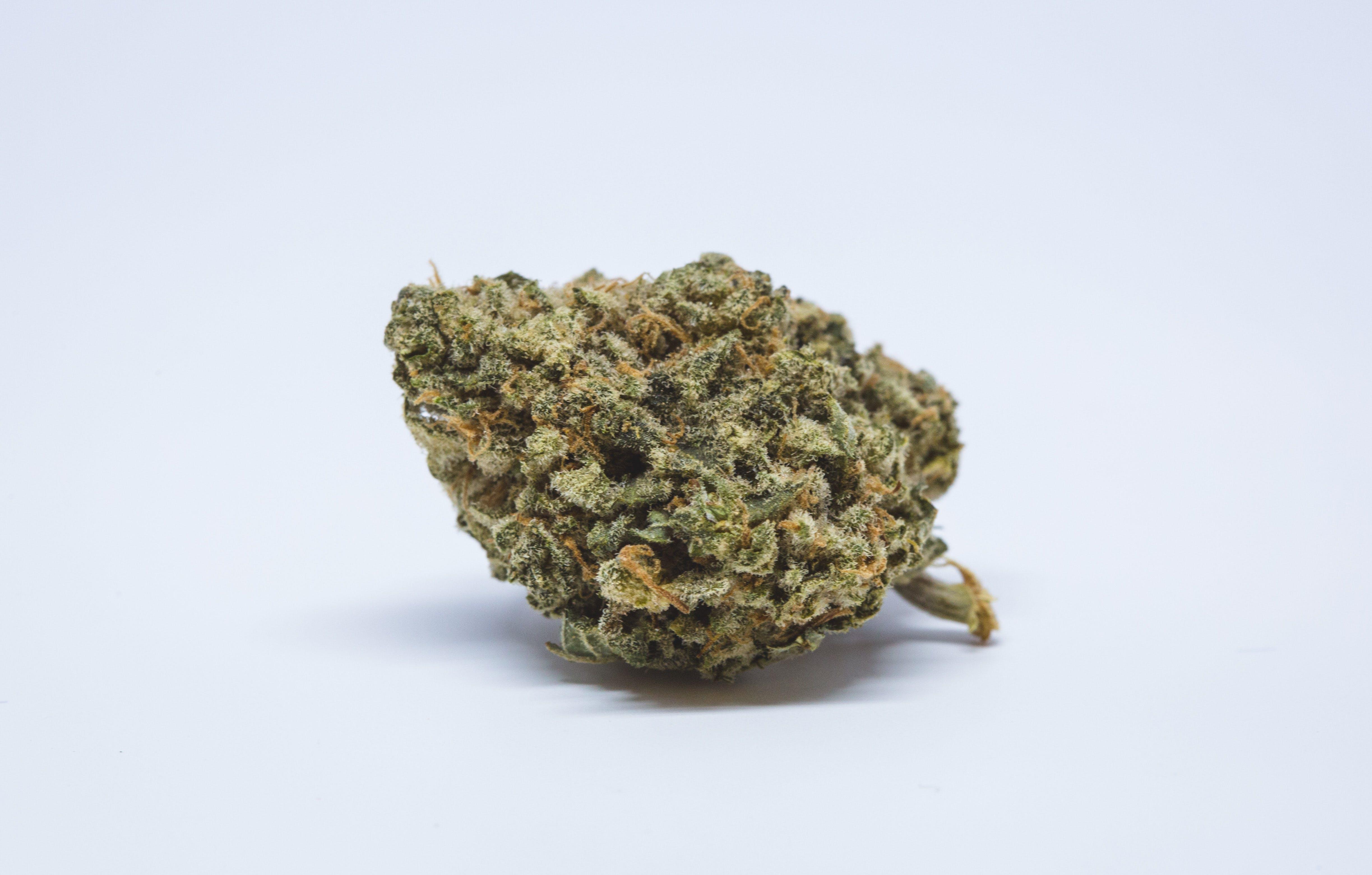 Maui Wowie Weed; Maui Wowie Cannabis Strain; Maui Wowie Sativa Strain