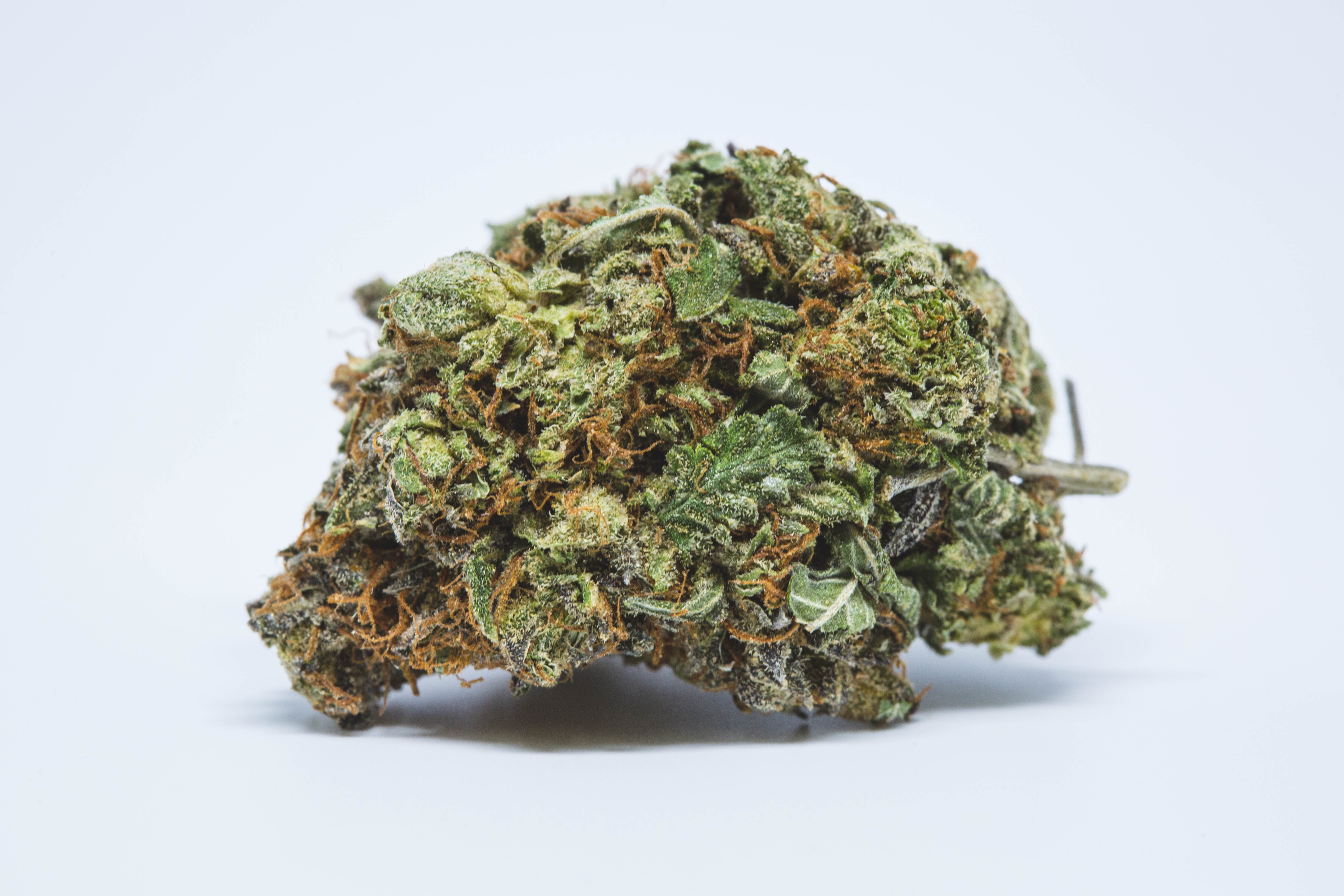 Purple Kush Weed; Purple Kush Cannabis Strain; Purple Kush Indica Marijuana Strain