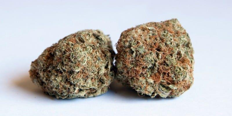 Mango Kush Weed; Mango Kush Cannabis Strain; Mango Kush Hybrid Marijuana Strain