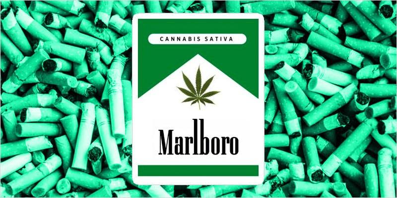Marlboro Marijuana