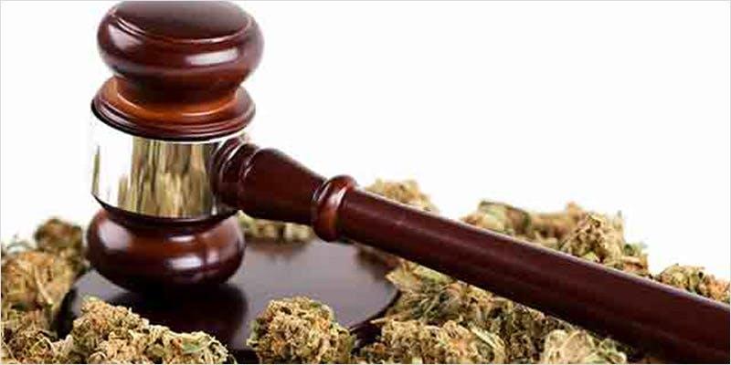 Michigan Marijuana 1 Michigan Govenor Takes Initiative With State Medical Progam