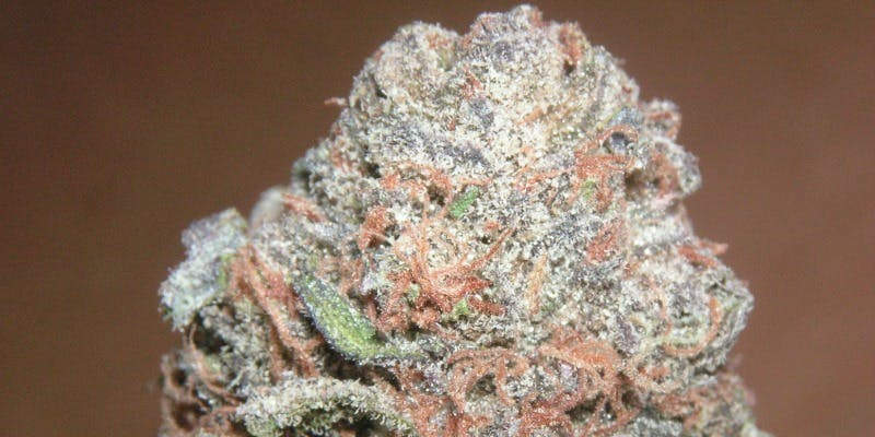 The 10 Strongest Indica Strains On Earth Right Now | Herb