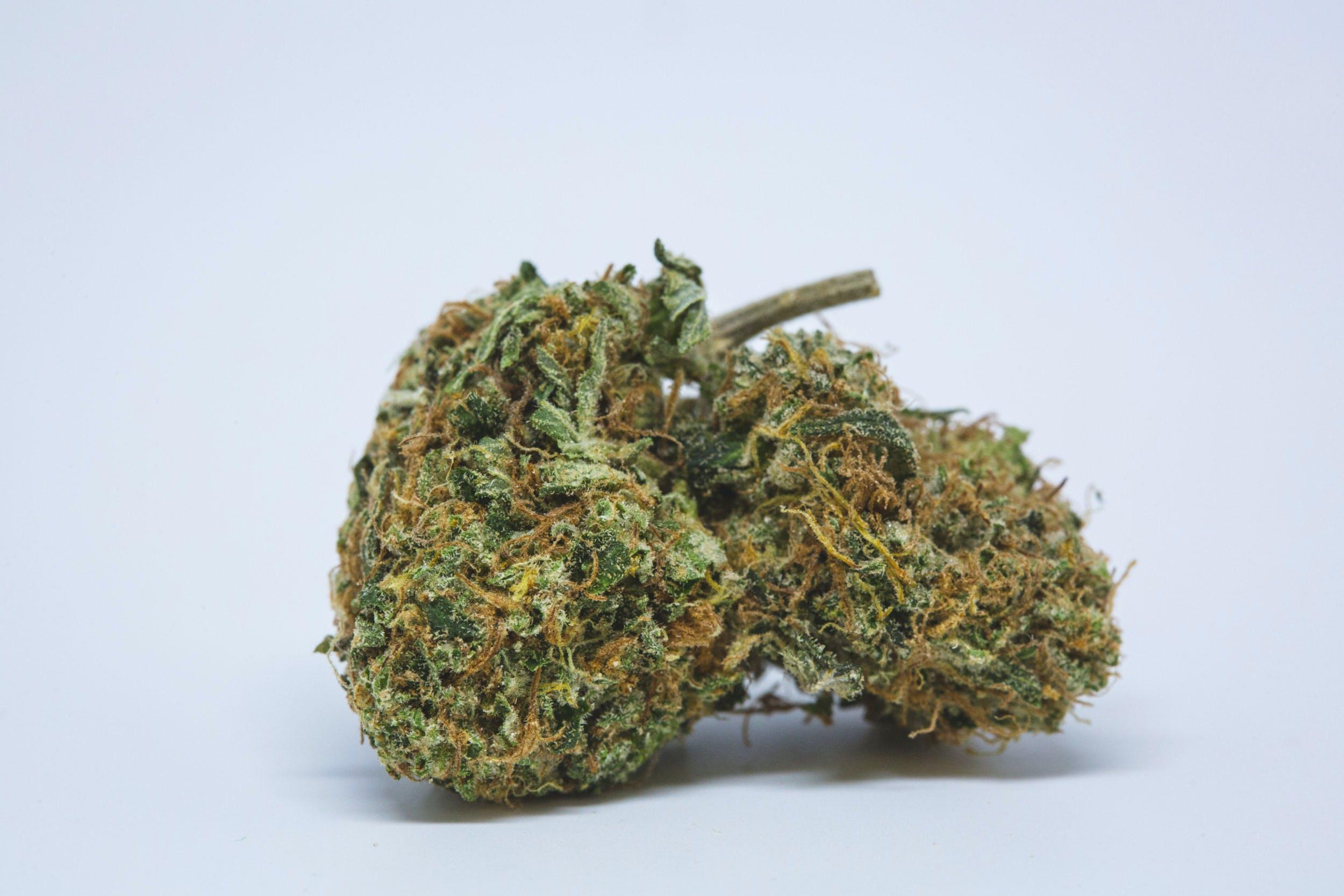 Space Queen Weed; Space Queen Cannabis Strain; Space Queen Hybrid Marijuana Strain