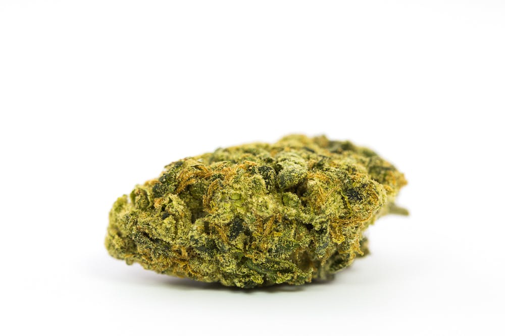 Super Lemon Haze Weed; Super Lemon Haze Cannabis Strain; Super Lemon Haze Hybrid Marijuana Strain