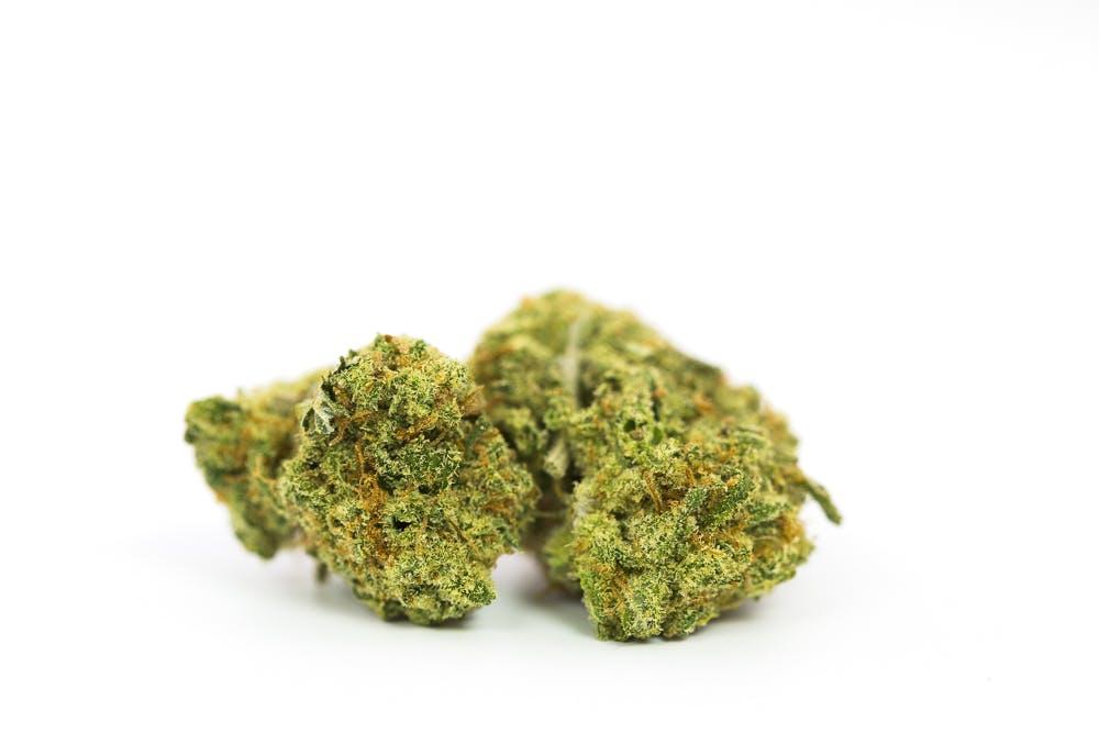 Super Silver Haze Weed; Super Silver Haze Cannabis Strain; Super Silver Haze Sativa Marijuana Strain