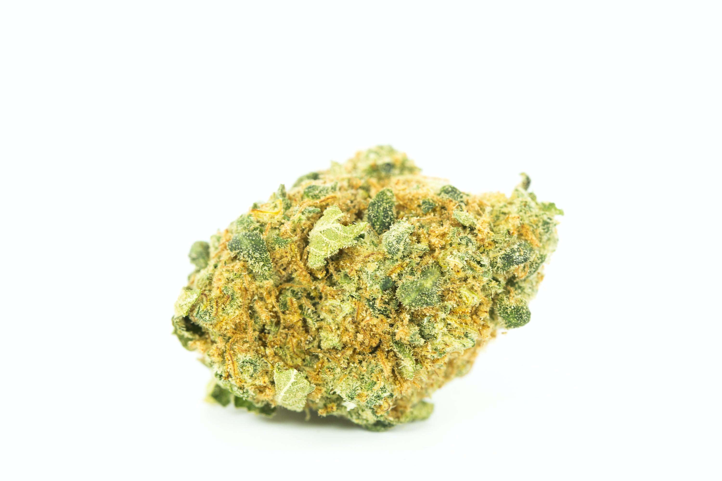 Tangerine Dream Weed; Tangerine Dream Cannabis Strain; Tangerine Dream Hybrid Marijuana Strain