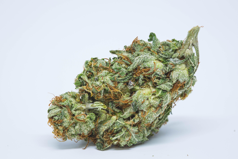 Afghani Weed; Afghani Cannabis Strain; Afghani Indica Marijuana Strain