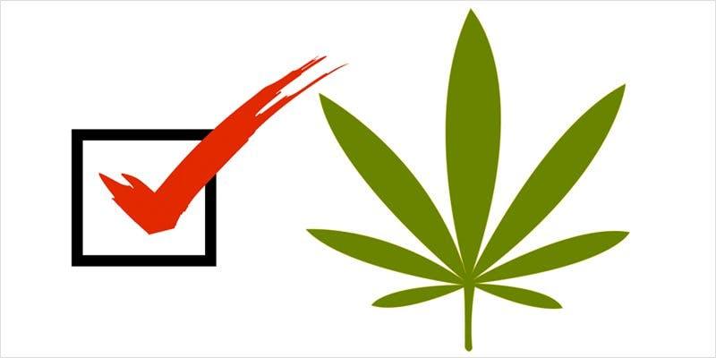 arizonagreenscene 2 What The Legal Green Scene Will Look Like In Arizona