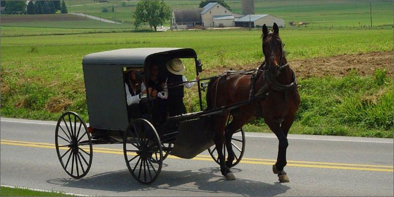 Old Order Mennonite