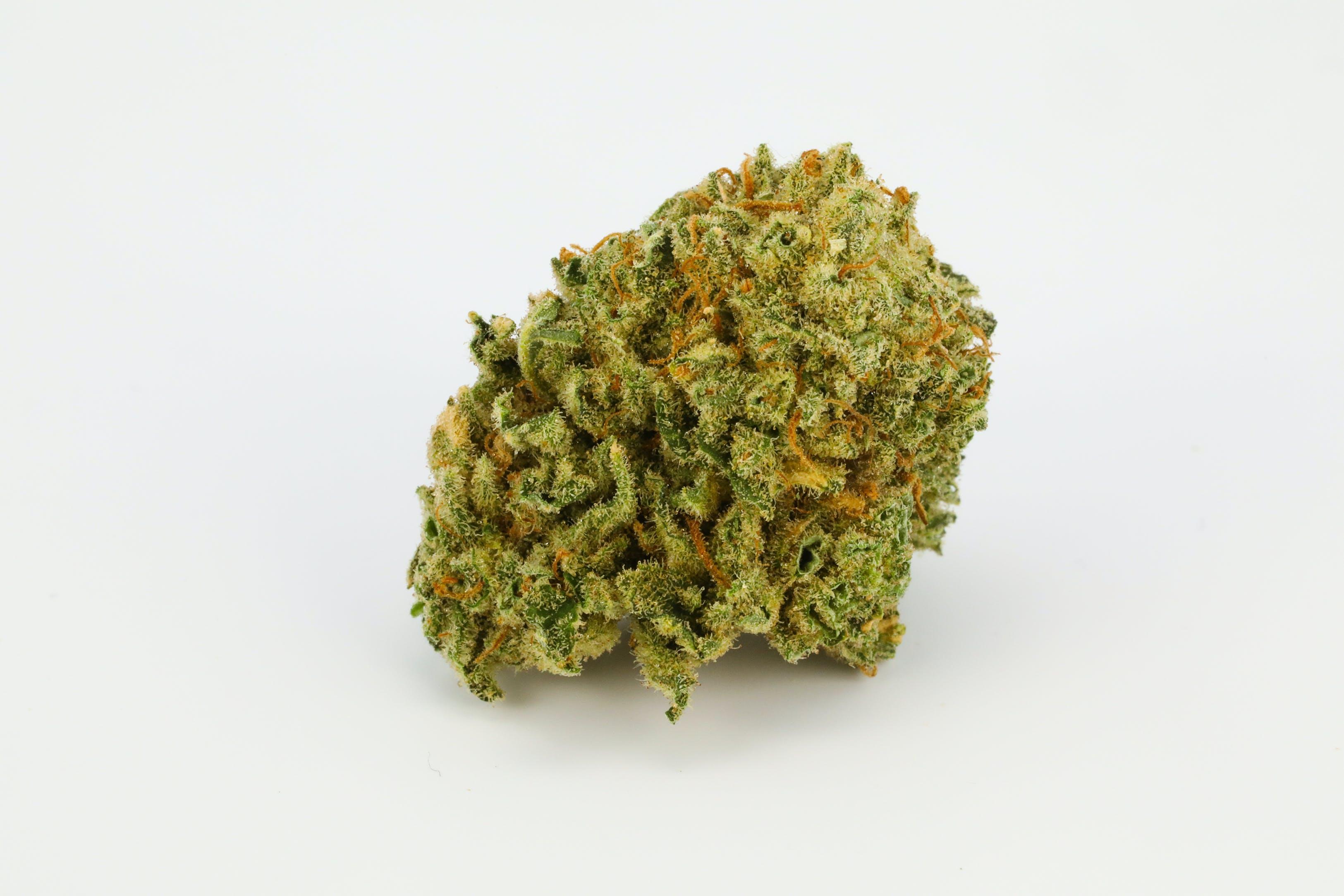 Sweet Nina Weed; Sweet Nina Cannabis Strain; Sweet Nina Hybrid Marijuana Strain
