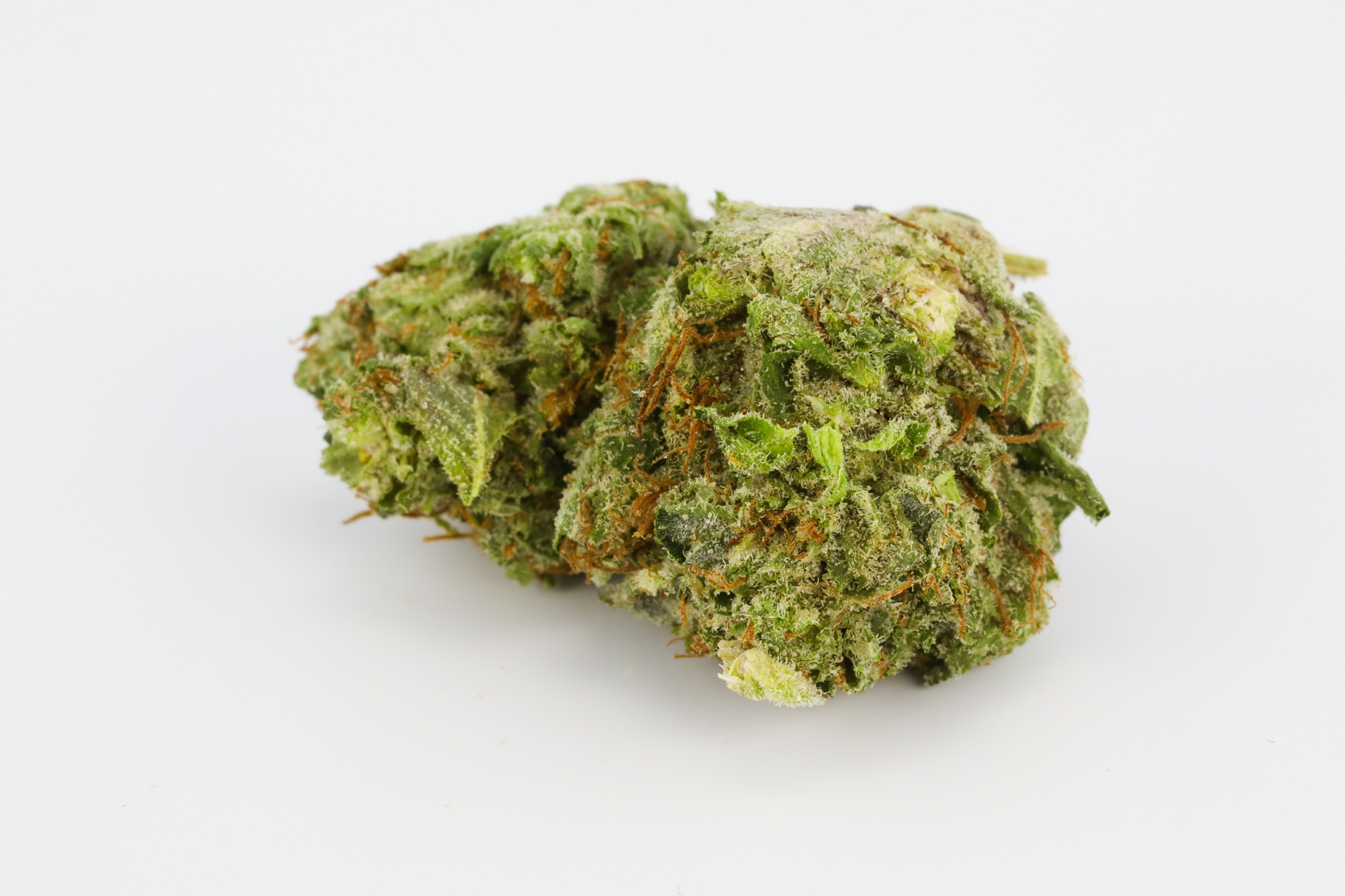 0G8A3214 The Top 5 Cannabis Strains for Hangover Symptoms