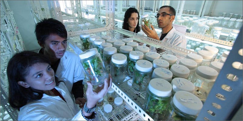 1 connecticut urges researchers medical cannabis laboratory Connecticut Urges Researchers To Study Its Medical Cannabis