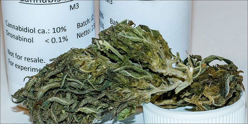 1 what its like smoke high cbd strain Man Walked Free From Court Over Medical Cannabis Charges