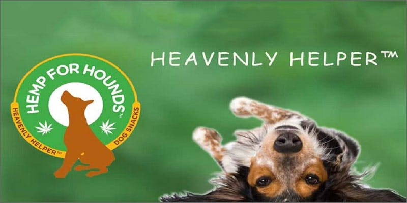 11 cannabis products for pets African Americans At Greatest Risk For Cannabis Arrests