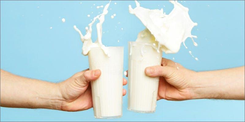 cannabidiol milk