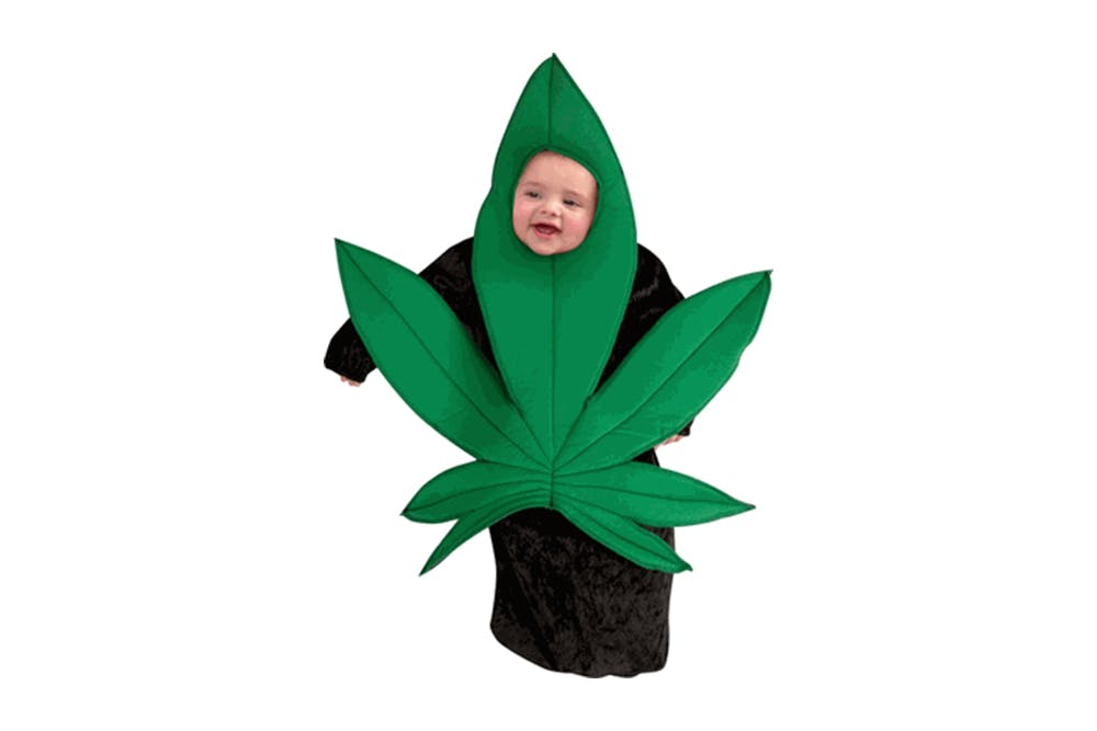 20 Awesome Weed Themed Halloween Costumes20 How to Get the Most Out Of Your Stash with the Best Weed Grinders