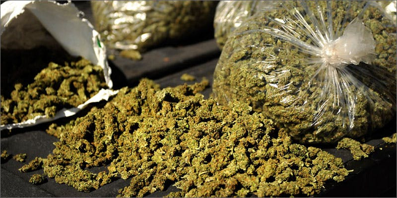 4 wake and bake products African Americans At Greatest Risk For Cannabis Arrests
