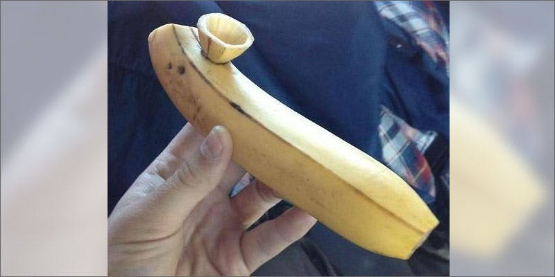7 weird homemade bongs banana Homemade Bongs For When Youre In A Bind