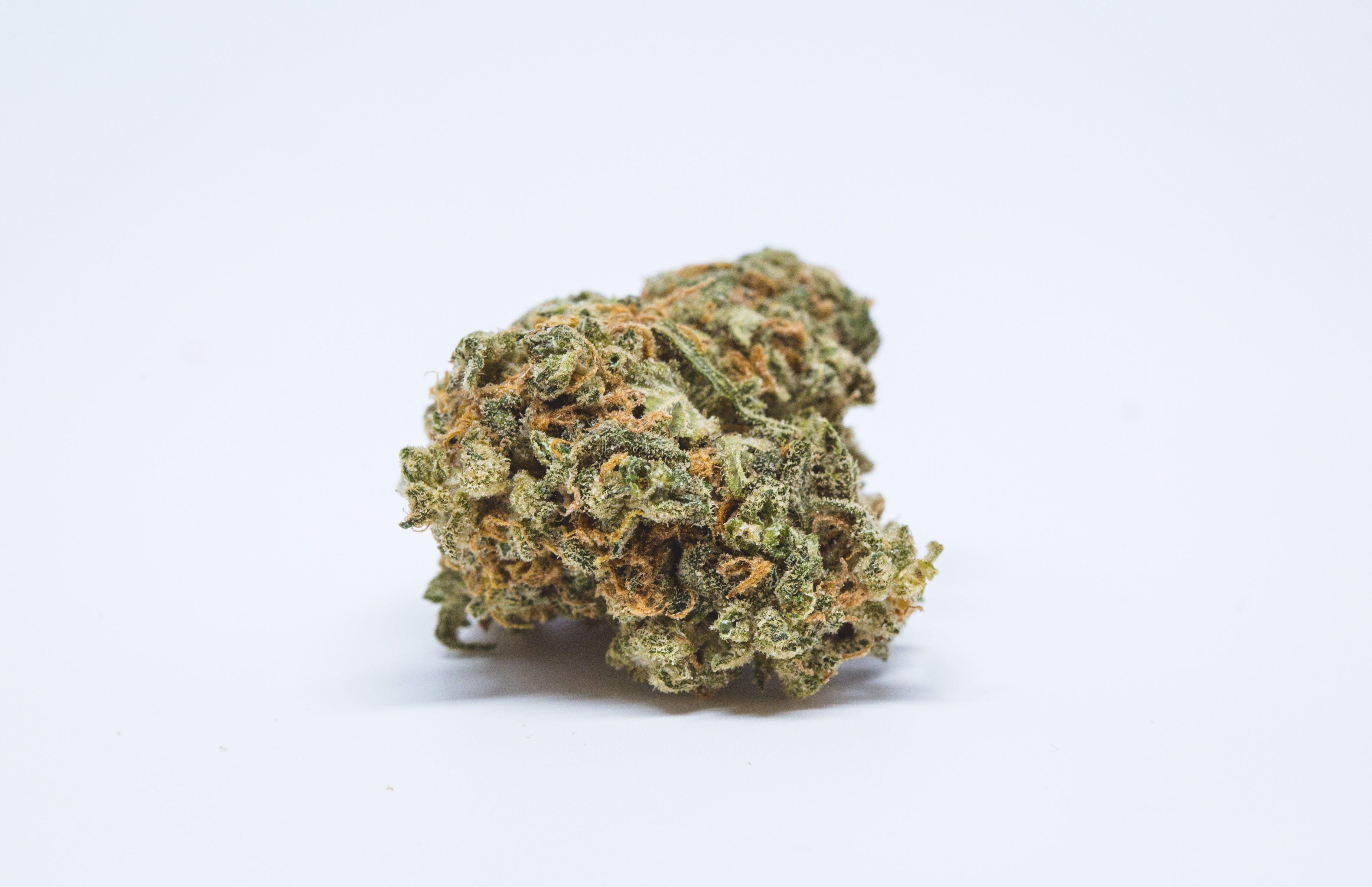 Haze Weed; Haze Cannabis Strain; Haze Sativa Marijuana Strain