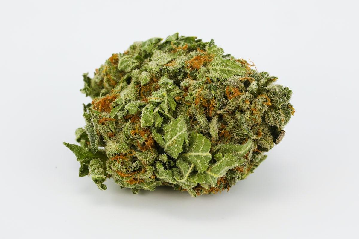 Candyland Strain | Herb