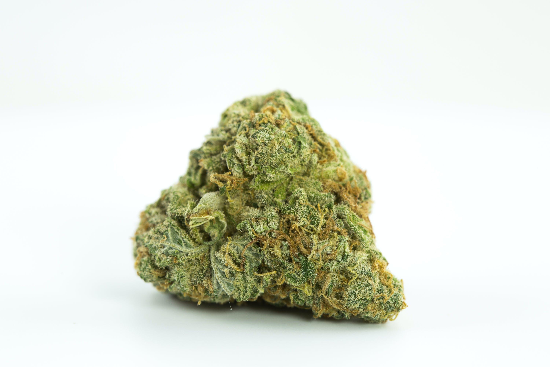 Critical + Weed; Critical + Cannabis Strain; Critical + Hybrid Marijuana Strain