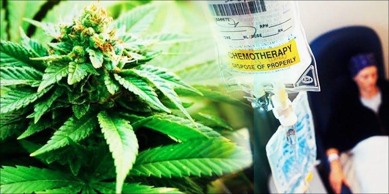 Debbie Rowe hero Paris Jackson Is Now Promoting Cannabis Over Chemo