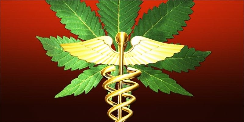 Ohios Medical 3 To Put It Bluntly, You Need To Watch This New Women & Weed Show