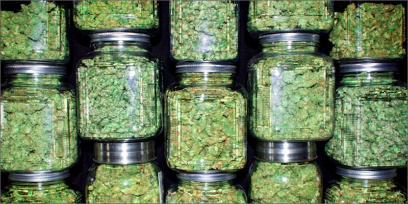 Cannabis.net