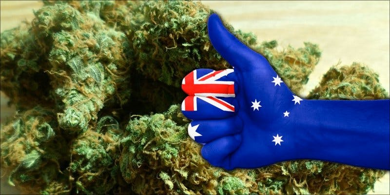 Australian entrepreneurs 2 To Put It Bluntly, You Need To Watch This New Women & Weed Show