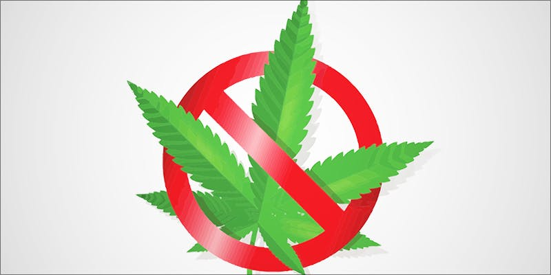 Boy With Special 2 Why Are Cannabis Users Increasingly Being Denied Gun Rights?