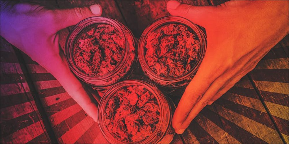 Heres How You Become Budtender Certified In Just 7 Days