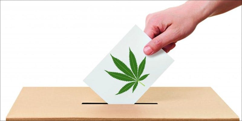Cannabis Votes 2 To Put It Bluntly, You Need To Watch This New Women & Weed Show