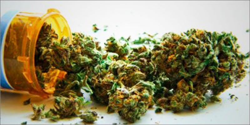 Catholic Church Gives 2 Why Are Cannabis Users Increasingly Being Denied Gun Rights?