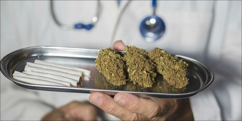 Dr. Oz 2 To Put It Bluntly, You Need To Watch This New Women & Weed Show