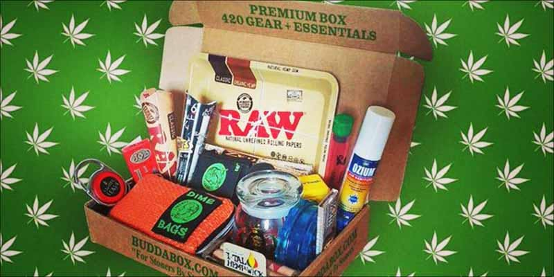 HERBs Holiday Gift 10 Minnesota Adds PTSD To Medical Cannabis Conditions