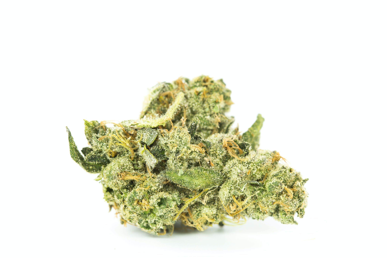 Hash Plant Weed; Hash Plant Cannabis Strain; Hash Plant Indica Marijuana Strain