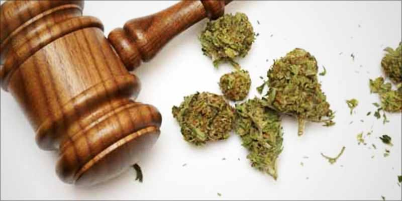 Marijuana Is Legal 1 New Police Survey Has Surprising Results About Legalization