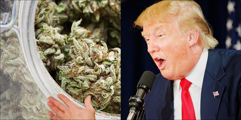 Medical Marijuana Is 2 Minnesota Adds PTSD To Medical Cannabis Conditions