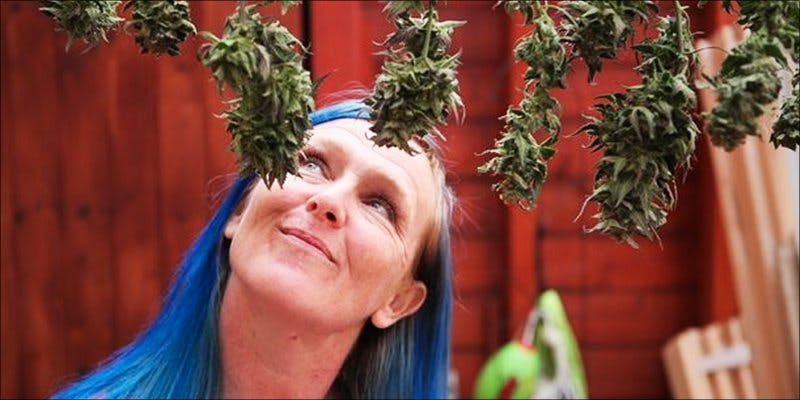 Prince Charles 2 To Put It Bluntly, You Need To Watch This New Women & Weed Show