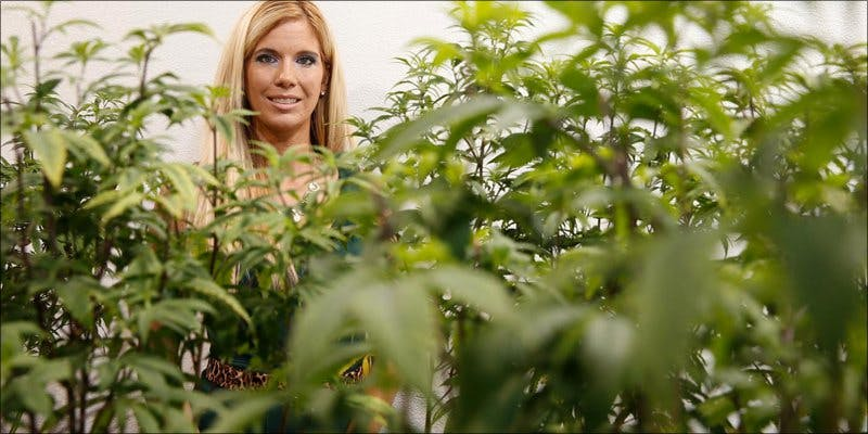 Santa Cruz 3 To Put It Bluntly, You Need To Watch This New Women & Weed Show
