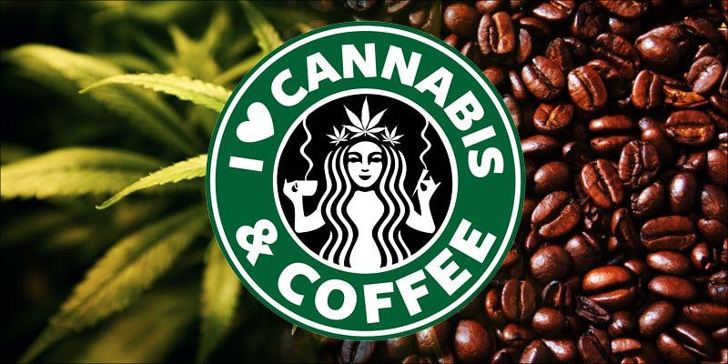 Starbucks wins hero To Put It Bluntly, You Need To Watch This New Women & Weed Show