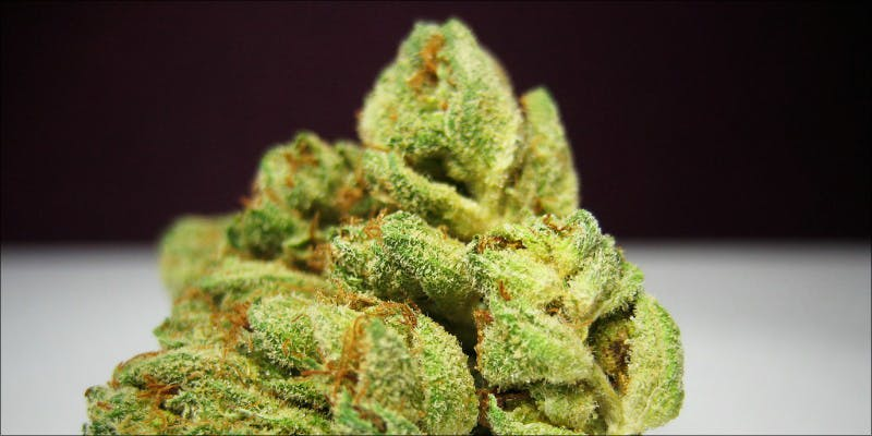 Top 10 Strains 2 Why Are Cannabis Users Increasingly Being Denied Gun Rights?
