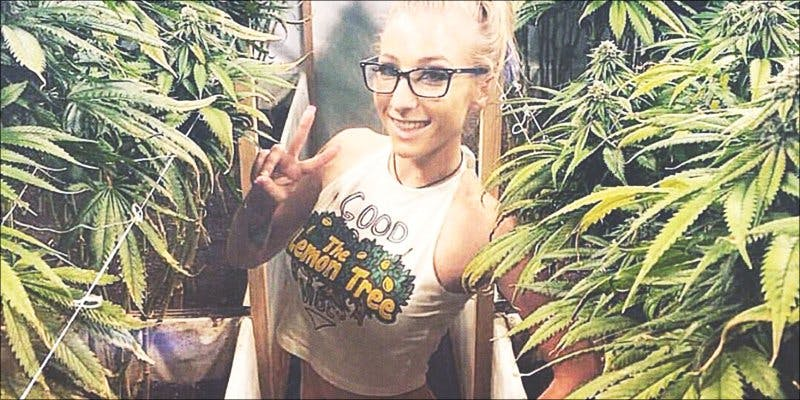 Weed Snapchats 5 The Californian Tax Glitch Is Great News For Medical Cannabis Patients