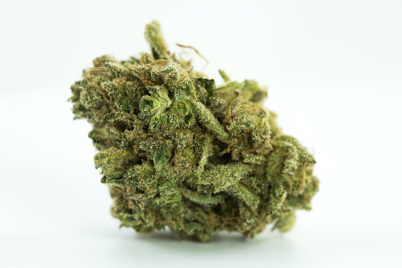 White Russian Weed; White Russian Cannabis Strain; White Russian Hybrid Marijuana Strain